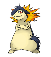 Flamey the Typhlosion by TheTyphlosionMaster