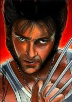 Wolverine Sketch Card by RandySiplon