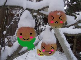 Frosted apples with faces by 16Prayers