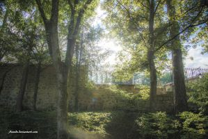 Sous Bois by Aneede