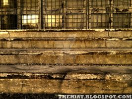 Steps of decay by toxicMDR