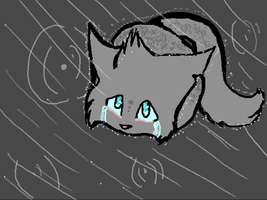 Ashfur in the rain Request by Foxtail76