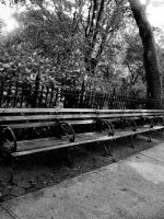 The bench by Roxsana2012