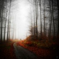 walk into fall by Lunox-baik