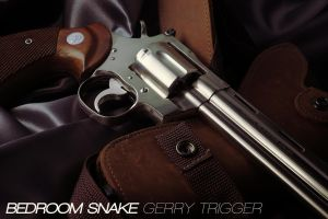 Bedroom Snake - Kokusai Colt Python .357 Model gun by AldgerRelpa