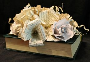 Bouquet Book Alteration by wetcanvas