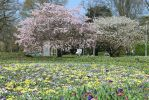 Spring Stock 22 by Malleni-Stock