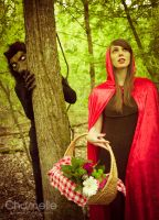 Little Red Riding Hood fairytale cosplay wolf by chamellephoto
