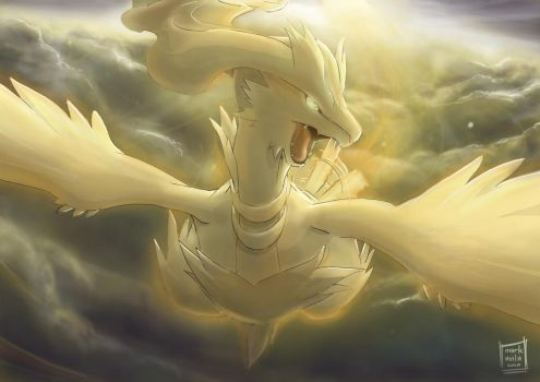 Reshiram: Soar to the Heavens by mark331