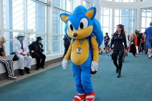 Sonic The Hedgehog at AX 2012 by Surferbrg
