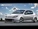 The Iron Lion Peugeot 206 by ygt-design