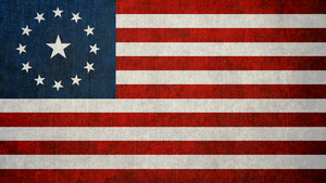 FALLOUT: Flag of the United States of America by okiir