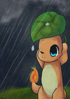 Charmander by Hibouette