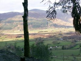 Looking over towards Dodd Wood and Skiddaw by Damien-Mildury