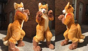 Golden Kitsune full suit by AlieTheKitsune