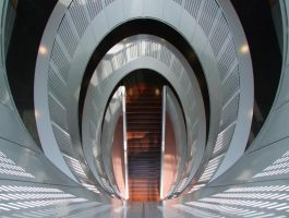 Tulip by T1sup
