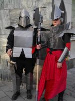 Fasching 2015 Cardboard knight and mage by killermedic