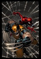 Wolverine and Spider-Man by K-Bol