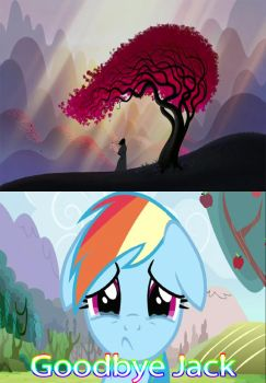 Rainbow Dash Reactions on Samurai Jack Finale by kouliousis
