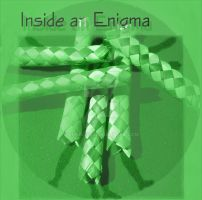 Cat-Tales: Inside an Enigma by chrisdee