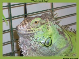 The Lizard King by MegerisAzarael