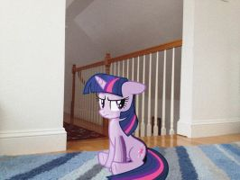 Twilight Hates My Sister and Her Friends by bosoxboy521