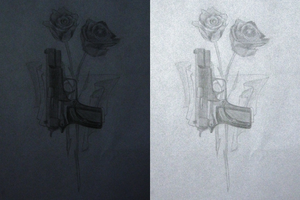 Roses and Guns by Averin-Renee