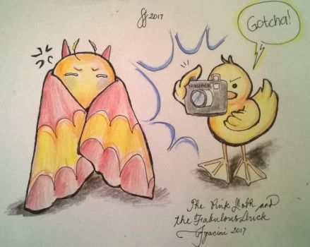 pink moth and the fabulous duck by jyacini