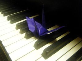 Crane Project, 73 - Piano by sapphirepyroshimmer