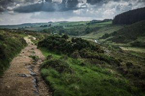 Rocky Path by aw-landscapes
