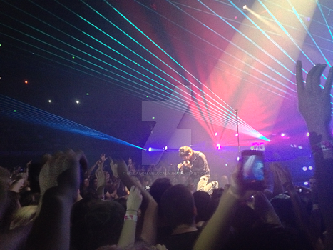 Muse Concert 13/12/13 - Matt Bellamy by Megalomaniacaly