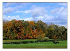 Fall Pastures by Goodbye-kitty975