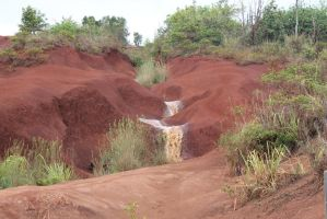 Red dirt of Kauai 2 by TheLastLutherian