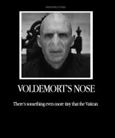 Voldemorts Nose by MarySeverus