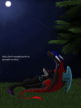 Peaceful night by DarkDragonKai