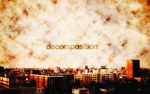 Decomposition by Winsord
