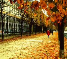 Autumn Leaves in Paris by samsamforever