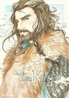 Thorin Oakenshield by NekoWork