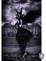 Maleficent-By Montreal Fine Art Photographer by HeraBell