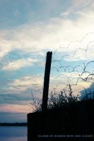 barbed wire and clouds by gr4y-inu
