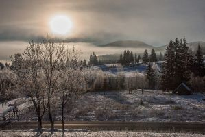 Frosty morning by pinyty