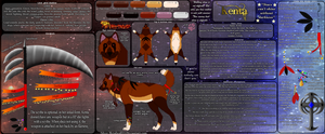 Kenta's reference by Silver-Metalwolf13