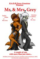 Mr 'n' Mrs Grey by greycat-rademenes