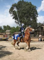 Even More Knight Joust Stock 5 by tursiart