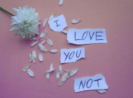 I Love you Not II by Red--Roses