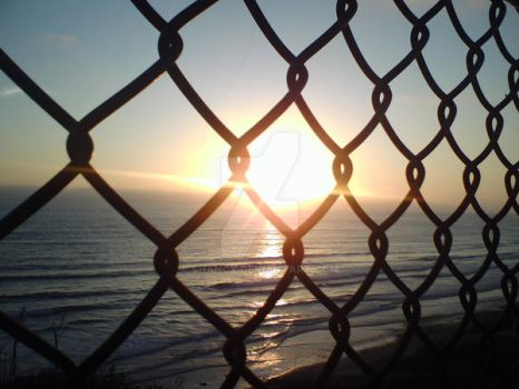 Sunset Through Fence by Shancy