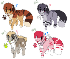 Cat Adoptables Batch #1 (ALL SOLD) by Oashi
