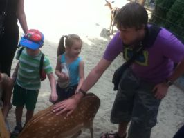Day at the Zoo: Me Petting a Deer by SithVampireMaster27