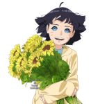 Himawari by angelcake12