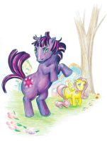Twilight Sparkle and Fluttershy by melaniecomics